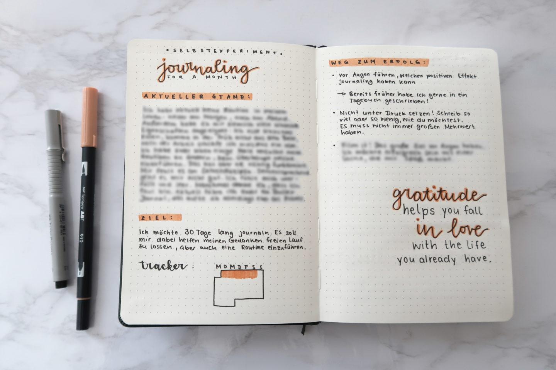 Bullet Journal, Notizbuch, journaling